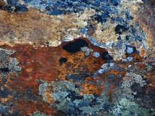 Add to the lichens the underlying color of the rock, this rich in iron, and it is a magical world.