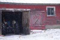 Barn-1324
