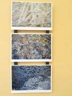 Triptych-1770