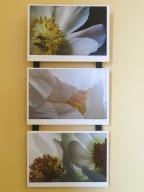 Triptych-1771