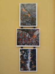 Triptych-1777