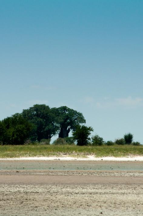 Africa-6265