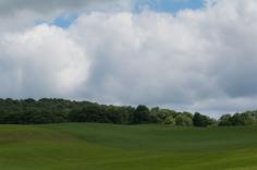 Farm-6205
