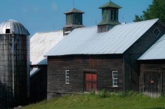 Farm-9043