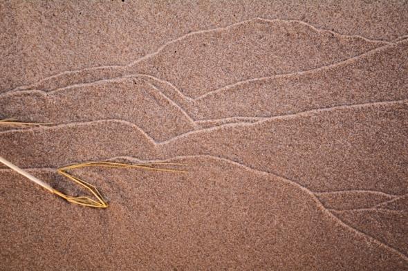 Dunes-6386