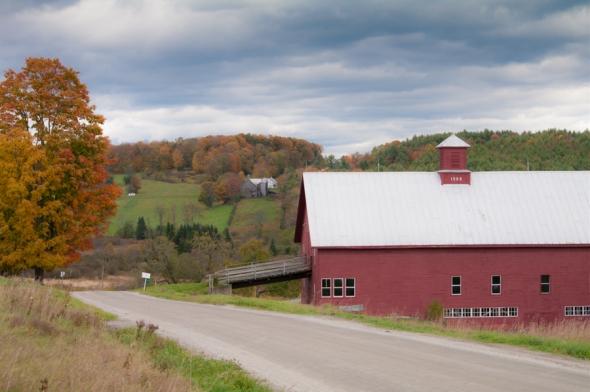 Farm-2705