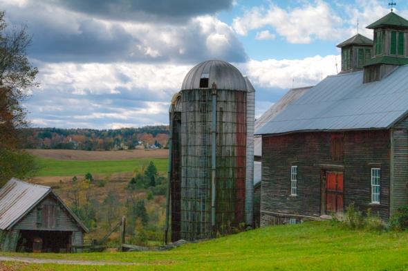 Farm-2798