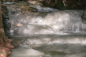 A small part of the stream shows ice forming in the falling water, the two very close in temperature.