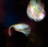 Light-9