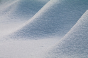 Snow-4299