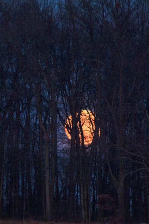 Moon-3846