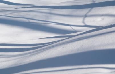 Snow-7686