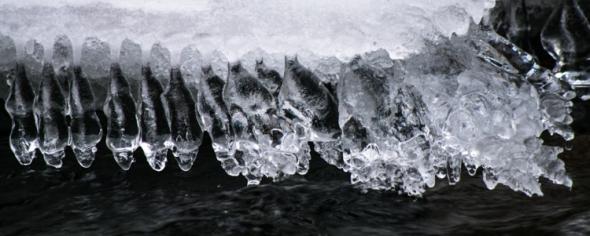 Ice-2941