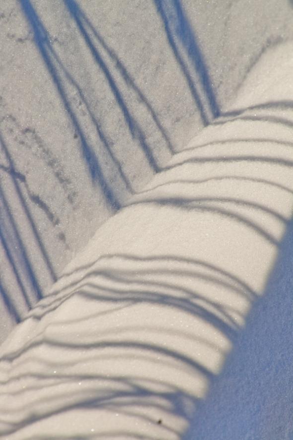 Snow-9143