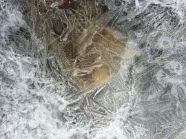 Ice-2334